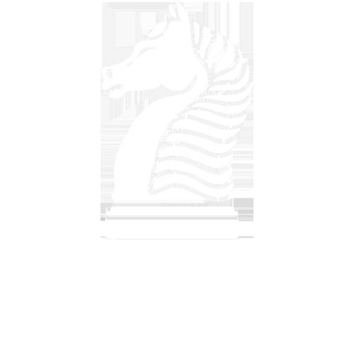 Paladin Innovations